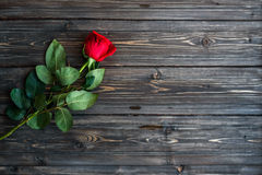 Romantic background with red rose on wood table, top view Stock Photos
