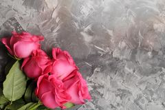 Romantic background. Red roses on a concrete table. Copy space. View from above. Flat lay.  royalty free stock photos