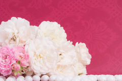 Romantic background with rose Stock Images