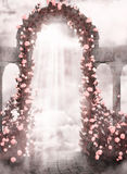 Romantic background with roses Stock Photos