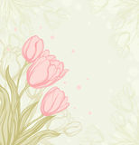 Romantic  background with tulips Stock Photos