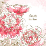 Romantic Background With Peony Royalty Free Stock Photography