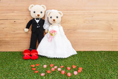 Romantic Bear Stock Images