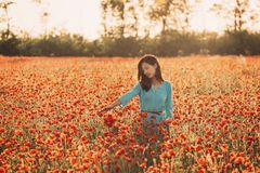 Romantic girl enjoying flower meadow. royalty free stock photography