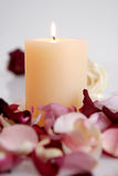 Romantic Beautiful pink and white roses Petals with candle Stock Image