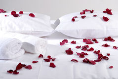 Romantic Beautiful red Petals on white cushions with white towels Stock Image