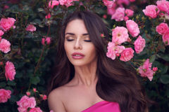 Romantic beauty portrait of woman in pink roses. Fashion style beauty romantic portrait of young pretty beautiful woman with long curly hair posing between pink Stock Photos