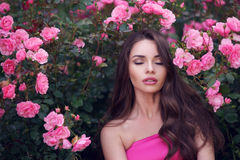 Romantic beauty portrait of woman in pink roses Stock Image