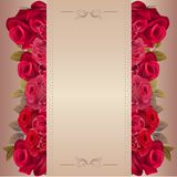 Romantic beige background with red roses Royalty Free Stock Photos