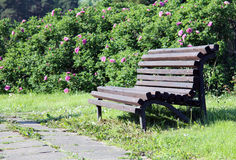 Romantic bench Royalty Free Stock Images