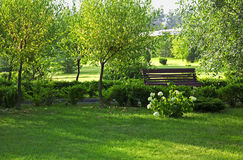 Romantic bench in peaceful park Royalty Free Stock Images