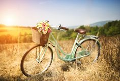 Romantic bike Stock Image