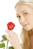 Romantic blond with red rose. Picture of romantic blond with red rose Stock Photography