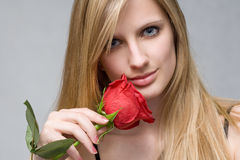 Romantic blond with red rose. Moody portrait of romantic blond with vibrant fresh red rose Stock Photo