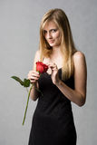 Romantic blond with red rose. Stock Photo