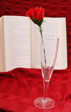 Romantic Book And Champagne Royalty Free Stock Photos