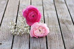 Romantic bouquet with pink roses Stock Photography