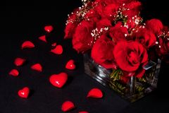 Romantic bouquet of red roses. Bouquet of blooming red roses in vase with scattered petals and love heart shaped marbles; black background stock photos