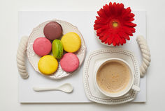 Romantic breakfast with coffee and macaroons. Flat lay of romantic breakfast with coffee and macaroons decorated with red flower on tray Royalty Free Stock Images