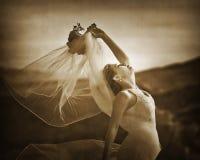 Romantic bride 6. Bride in the canyon of fire Stock Photos
