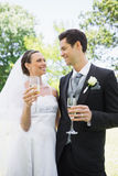 Romantic bride and groom having champagne in park Royalty Free Stock Photography