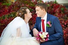 Romantic bride and groom Stock Photos