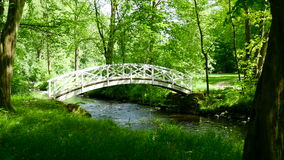 Romantic bridge over river in forest. Europe, Germany. stock video footage