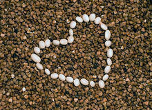 Romantic buckwheat and white beans heart. Brown buckwheat sereal seeds and white beans heart-shaped close-up Royalty Free Stock Photo