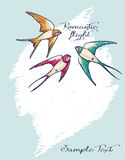 Romantic card with flying colorful swallows Royalty Free Stock Photo