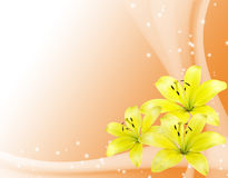 Romantic card with yellow flowers Royalty Free Stock Photography