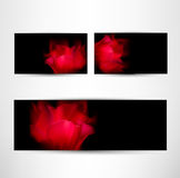 Romantic cards set with red tulip petals Stock Images