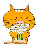 Romantic cat. A red cat with a bunch of flowers Royalty Free Stock Photos