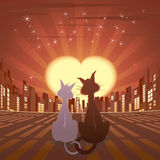 Romantic cats in city Stock Photo