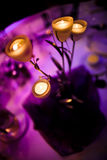 Romantic centerpiece with candles Stock Image
