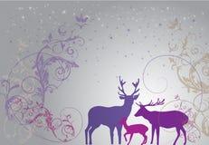 Romantic Christmas. Season Greetings card showing a romantic theme Stock Photos