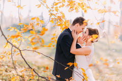 Romantic close-up portrait of th cheerful newlywed couple among the yellowed leaves. royalty free stock photo