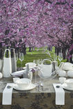 Romantic coffee table setting stock photo