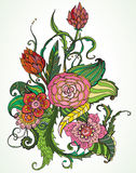 Romantic color hand drawn floral ornament Royalty Free Stock Image