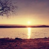 Romantic colorful sunset on the lake. Beach with birch tree and hot red Sun in water mirror Stock Photography