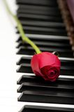 Romantic concept. Red rose on piano keys Stock Photo
