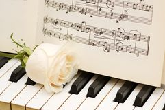 Romantic concept. White rose on piano keys Royalty Free Stock Image
