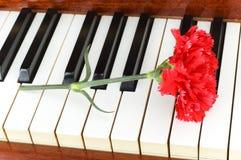 Romantic concept Stock Image