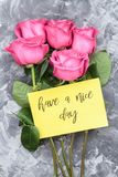 Romantic concept. Red roses and lettering wishing have a nice day on a gray concrete background.  royalty free stock image