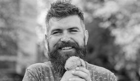 Romantic concept. Romantic hipster made bouquet, green nature background, defocused. Man with beard and mustache on. Happy face holds bouquet of dandelions royalty free stock photo