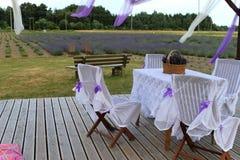 Romantic corner at lavender field Stock Image