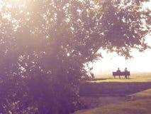Romantic couple on a bench under a tree Stock Photos