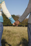 Romantic Couple Holding Hands In Field Royalty Free Stock Photo
