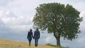 Romantic couple holding hands, walking life journey together, kissing under tree. Stock footage stock footage