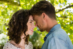 Romantic couple looking face to face in garden. On a sunny day Royalty Free Stock Images