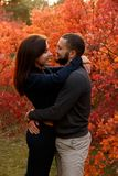 Romantic couple in love in autumn park. In the red leaves Stock Images